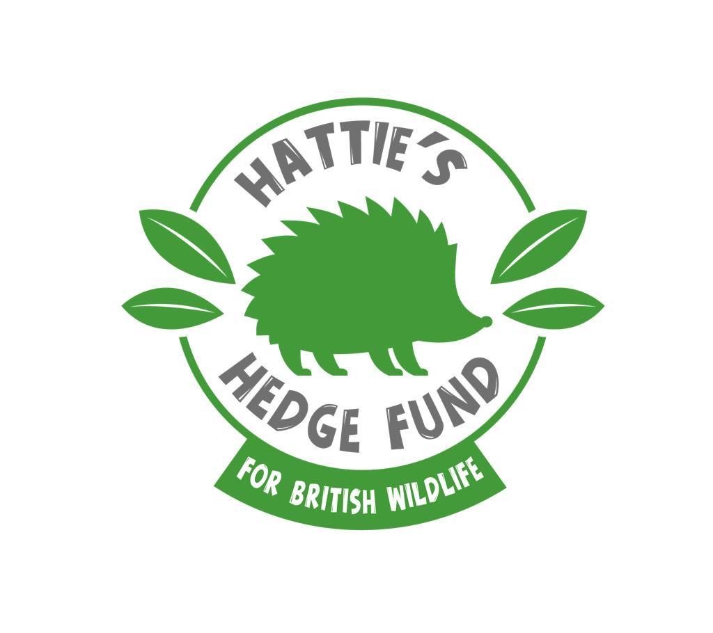 Hattie's Hedge Fund